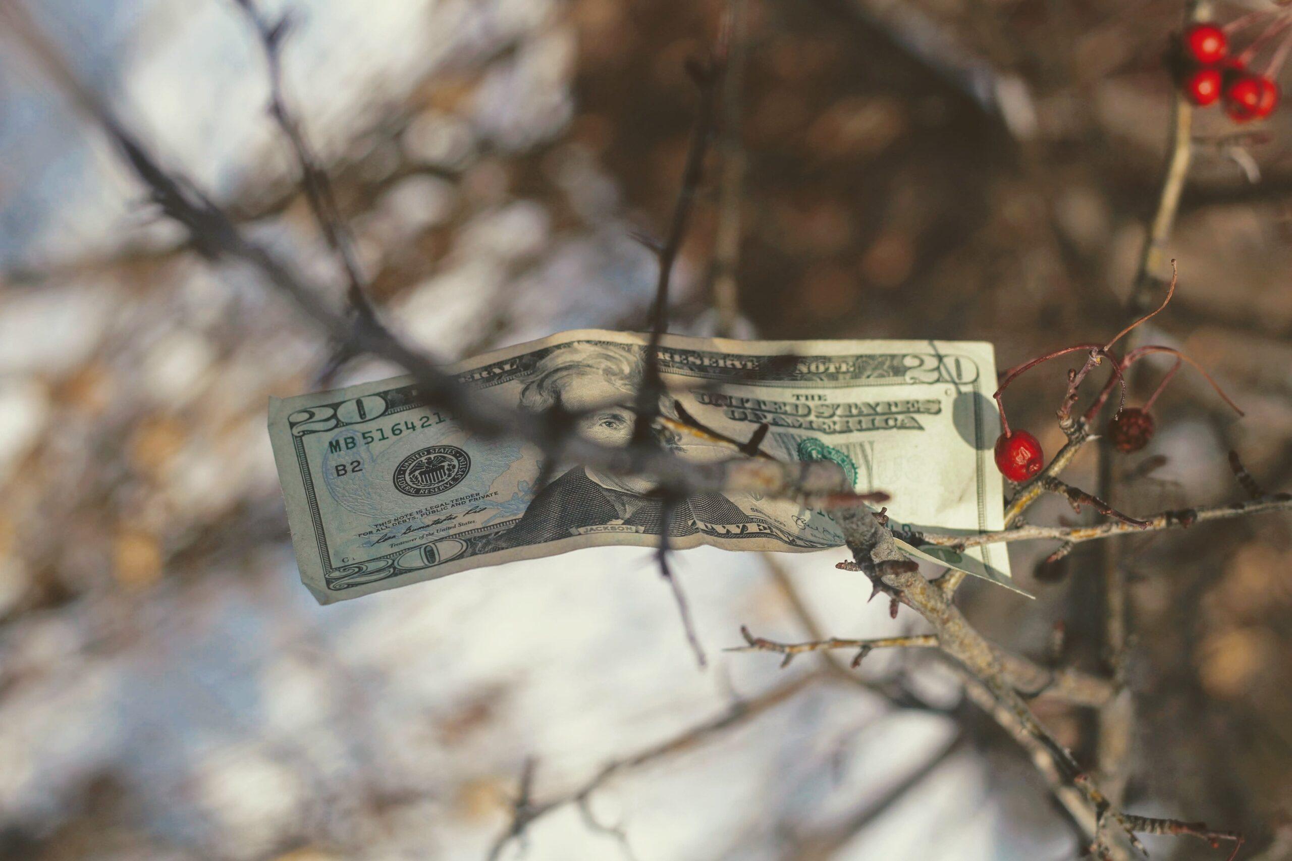 Pénzkeresés otthonról-nem a fán terem, az tuti